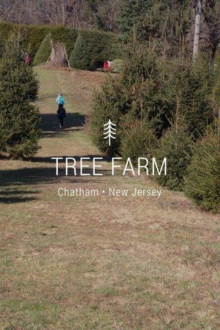 TREE FARM Chatham • New Jersey