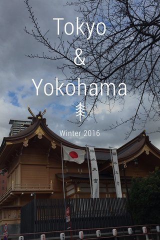 Tokyo & Yokohama Winter 2016