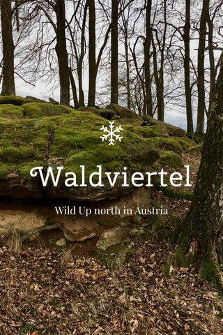 Waldviertel Wild Up north in Austria