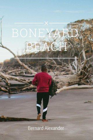 BONEYARD BEACH Bernard Alexander