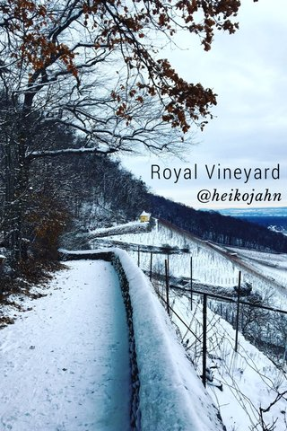Royal Vineyard @heikojahn