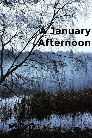 A January Afternoon