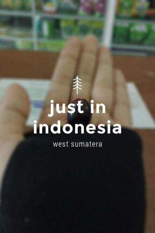just in indonesia west sumatera