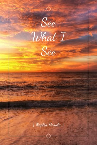 See What I See | Naples Florida |