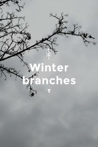 Winter branches ❣️
