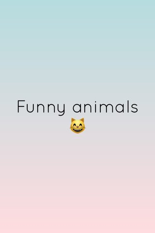 Funny animals 😸