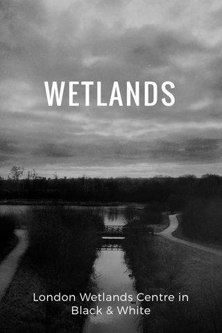 WETLANDS London Wetlands Centre in Black & White