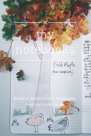 my notebooks #creative #stellerstories #notebooks #writing #stellerverse