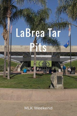 LaBrea Tar Pits MLK Weekend