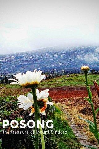 POSONG the treasure of Mount Sindoro