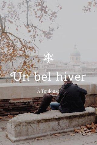 Un bel hiver À Toulouse