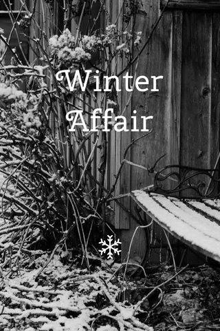 Winter Affair