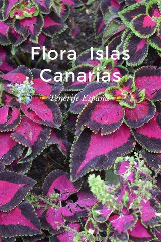 Flora Islas Canarias 🇪🇸 Tenerife España 🇪🇸