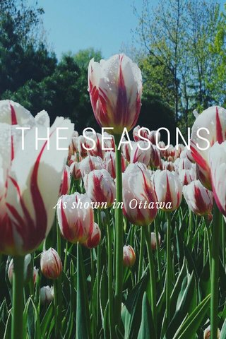 THE SEASONS As shown in Ottawa