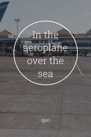In the aeroplane over the sea igun