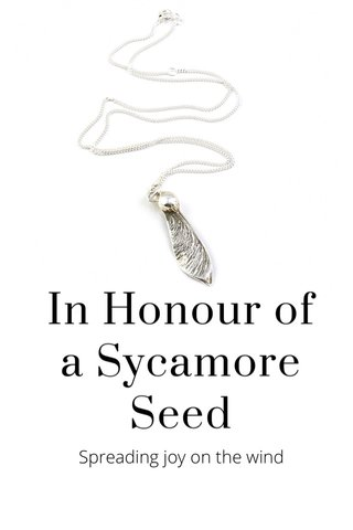 In Honour of a Sycamore Seed Spreading joy on the wind