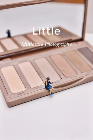 Little Miniature Photography