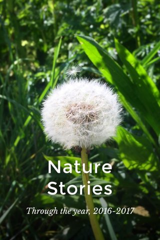 Nature Stories Through the year, 2016-2017