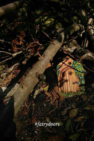 magical world #fairydoors