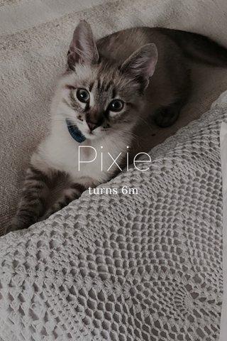 Pixie turns 6m