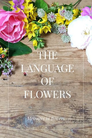THE LANGUAGE OF FLOWERS Messages in flowers