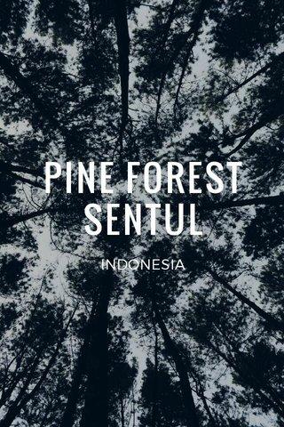 PINE FOREST SENTUL INDONESIA