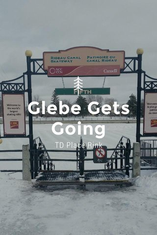Glebe Gets Going TD Place Rink