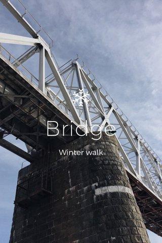 Bridge Winter walk