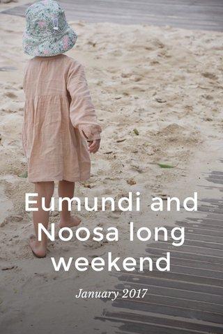 Eumundi and Noosa long weekend January 2017