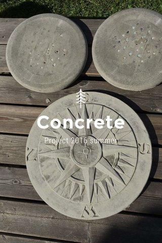 Concrete Project 2016 summer