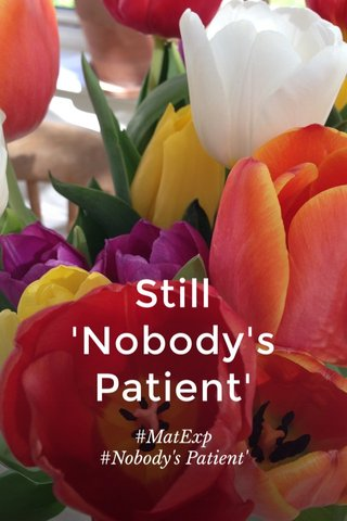 Still 'Nobody's Patient' #MatExp #Nobody's Patient'