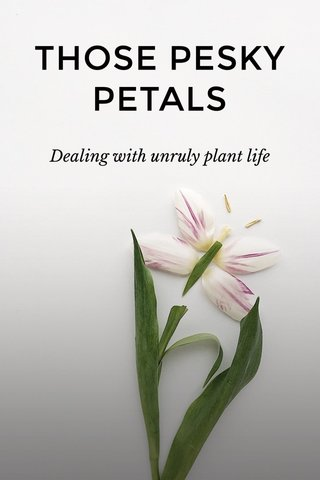 THOSE PESKY PETALS Dealing with unruly plant life