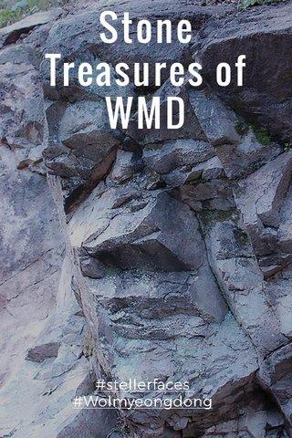 Stone Treasures of WMD #stellerfaces #Wolmyeongdong