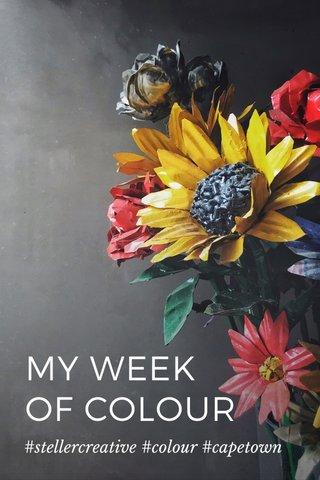 MY WEEK OF COLOUR #stellercreative #colour #capetown