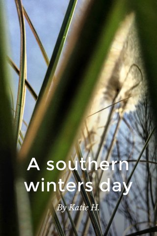 A southern winters day By Katie H.