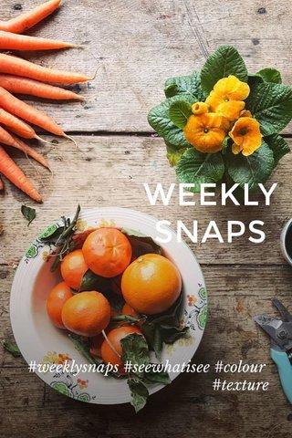 WEEKLY SNAPS #weeklysnaps #seewhatisee #colour #texture