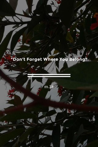 """""""Don't Forget Where You Belong"""" m.18"""