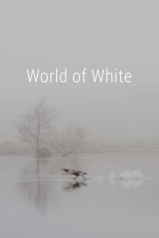 World of White