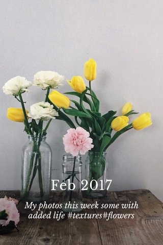 Feb 2017 My photos this week some with added life #textures#flowers
