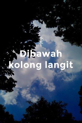 Dibawah kolong langit