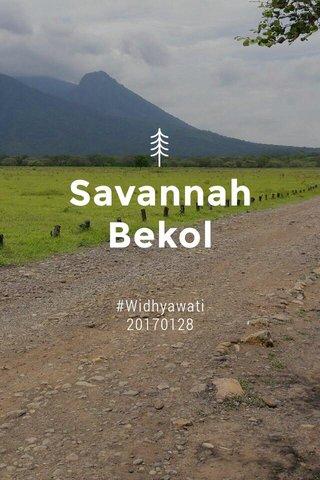 Savannah Bekol #Widhyawati 20170128