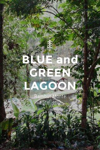 BLUE and GREEN LAGOON Rambut Monte #StellerID