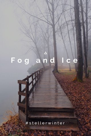Fog and Ice #stellerwinter