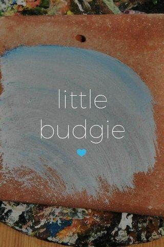 little budgie 💙