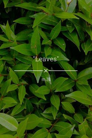 """Leaves"" m.18"