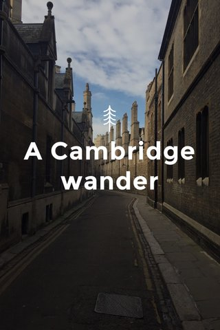 A Cambridge wander