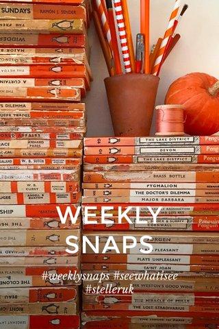 WEEKLY SNAPS #weeklysnaps #seewhatisee #stelleruk