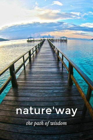 nature'way the path of wisdom