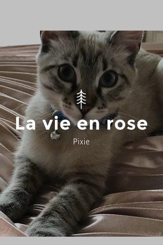 La vie en rose Pixie