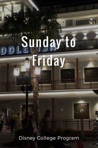 Sunday to Friday Disney College Program